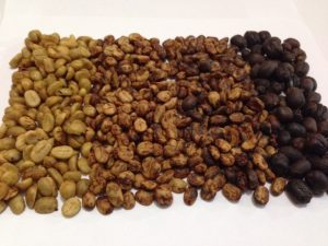 Tarrazu Green Coffee Beans that have been processed four different ways : wet (washined), semi-wet (honey), and dry (natural) process